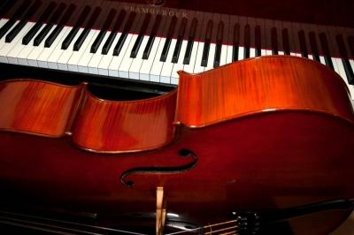 Evenement: Cello - Piano Concert & Masterclass