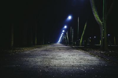 Evenement: De invloed van licht op de natuur